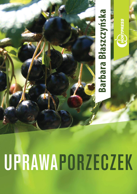 uprawa_porzeczek