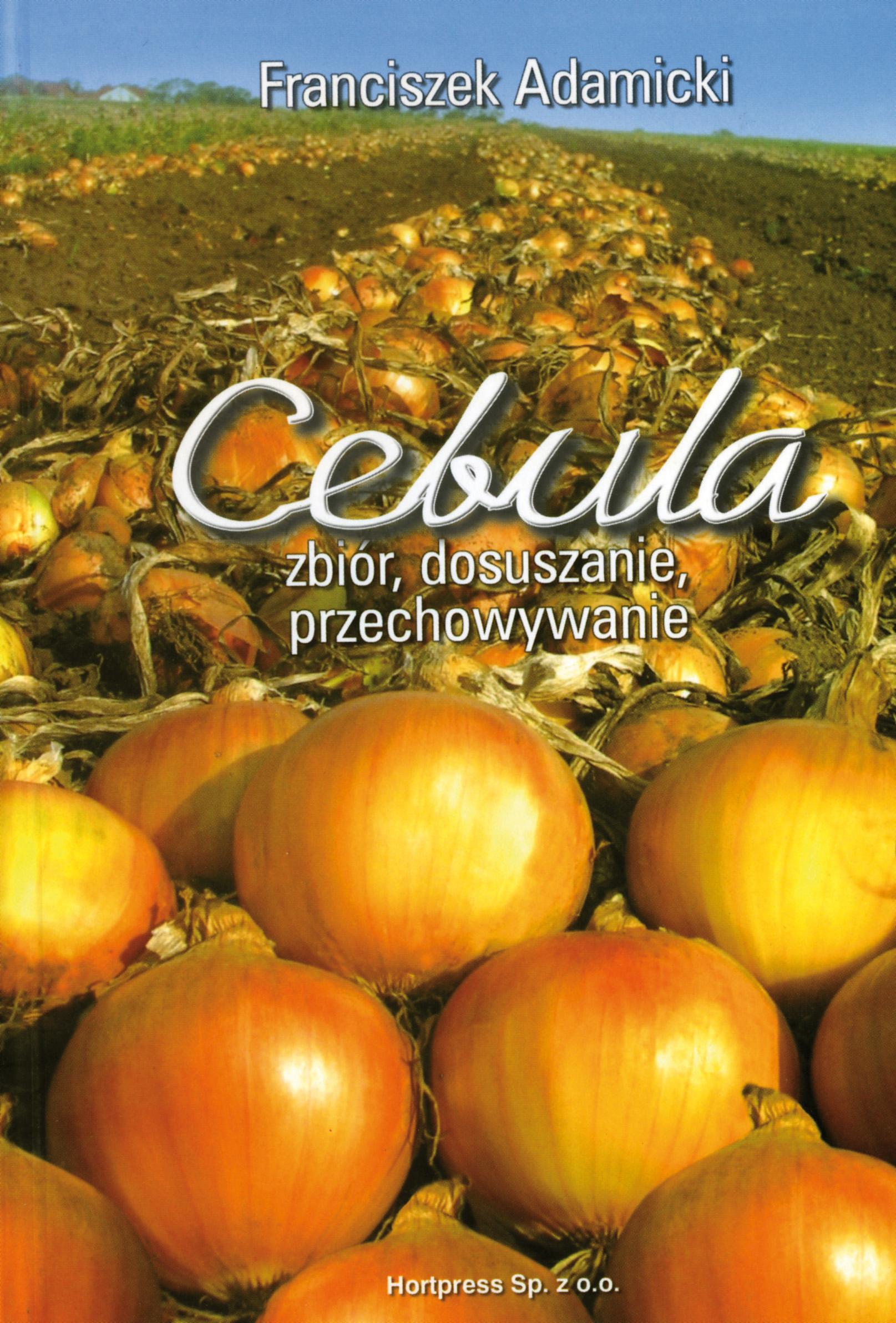 cebula_zbior-dosuszanie-przechowywanie