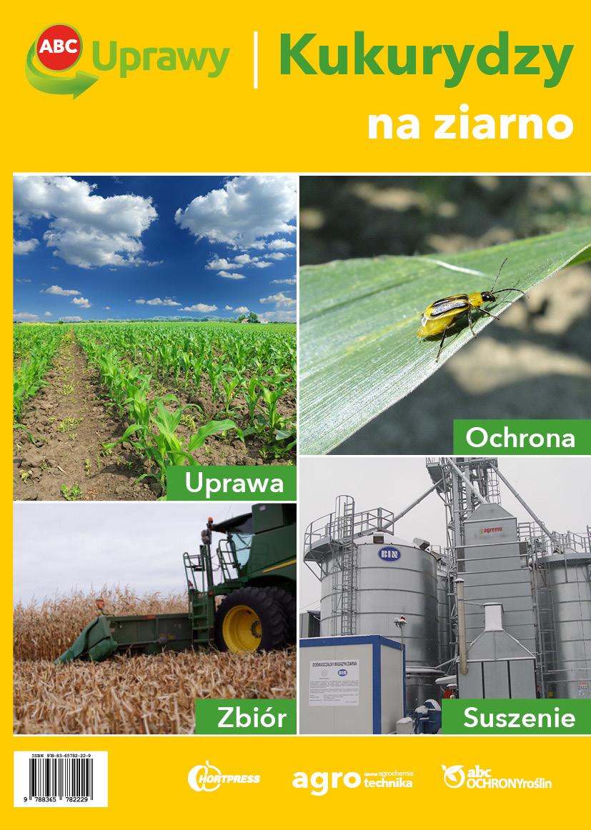kukurydza_okladka_1
