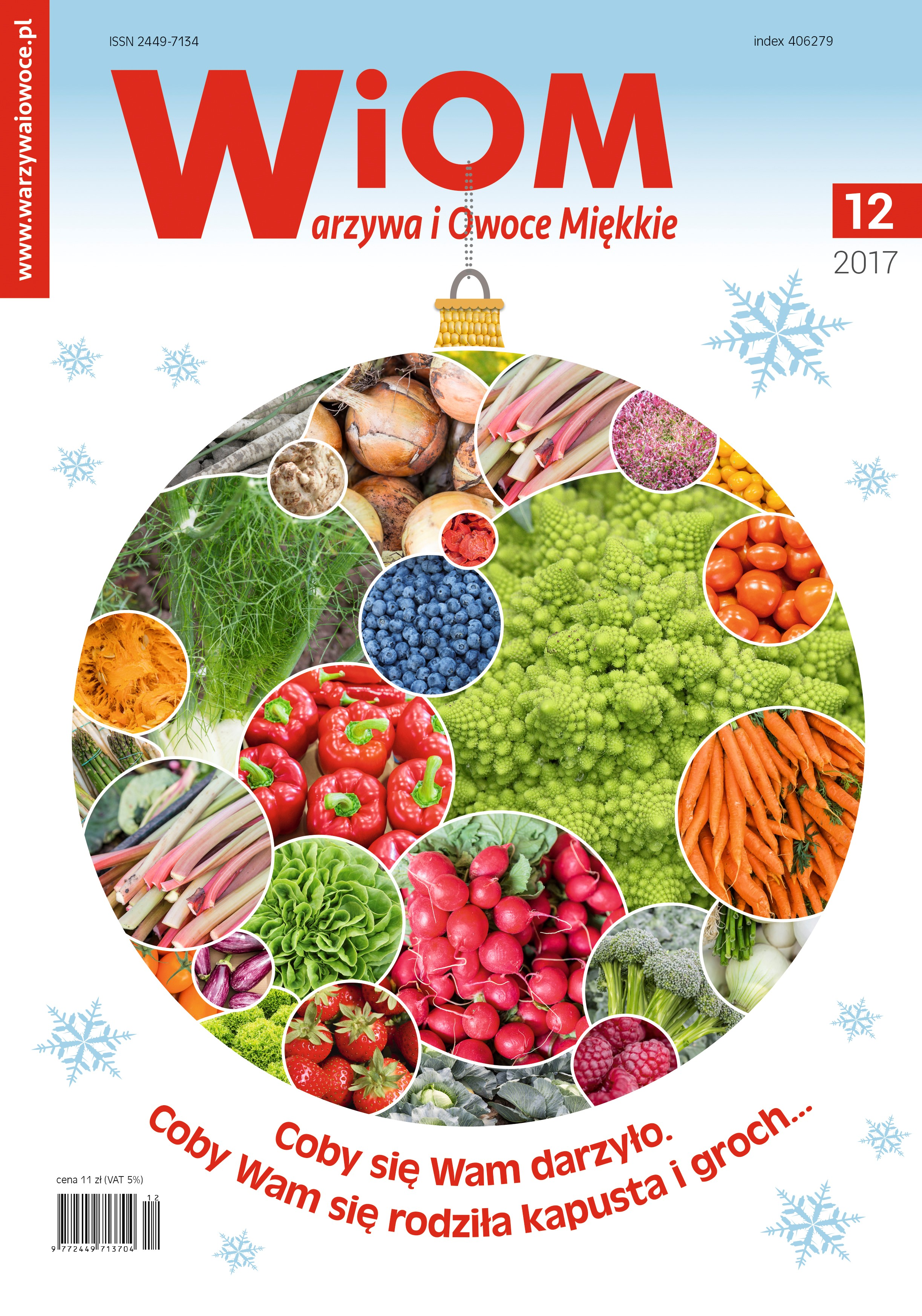 okladka-wiom-12-2017