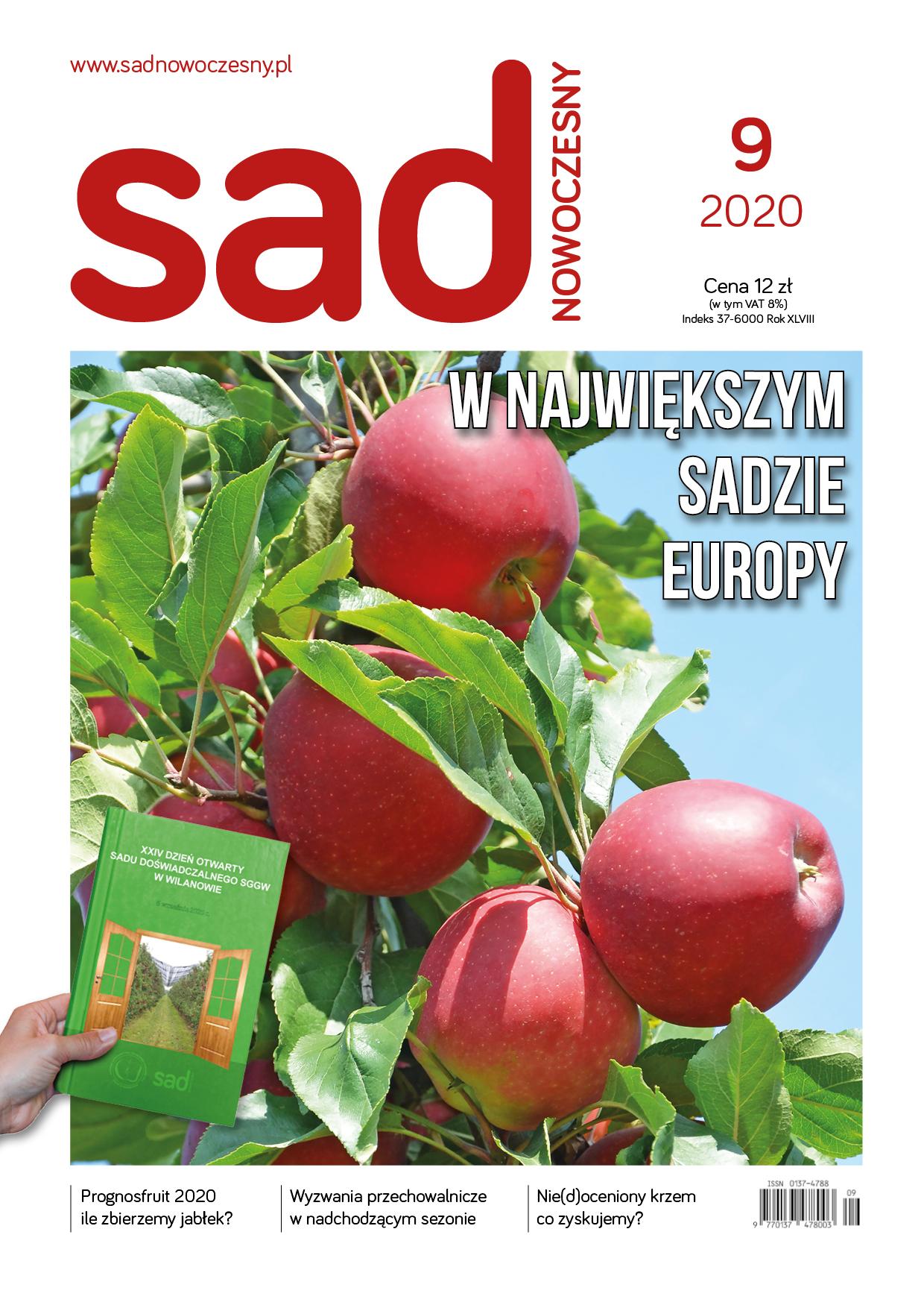 sn09-2020